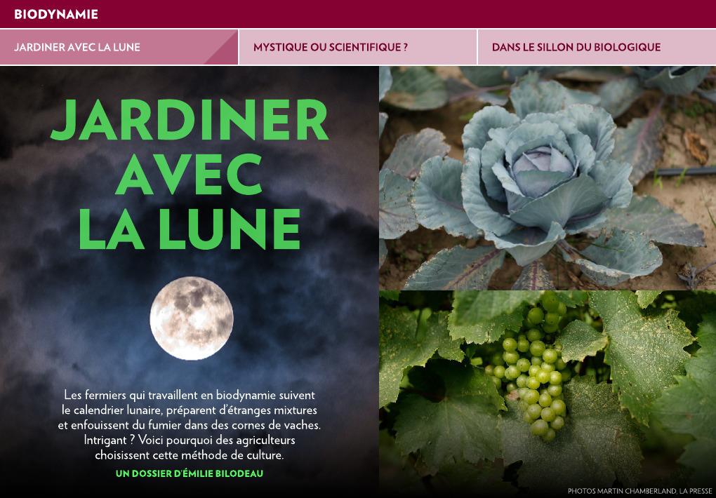 Jardiner avec la Lune - La Presse+