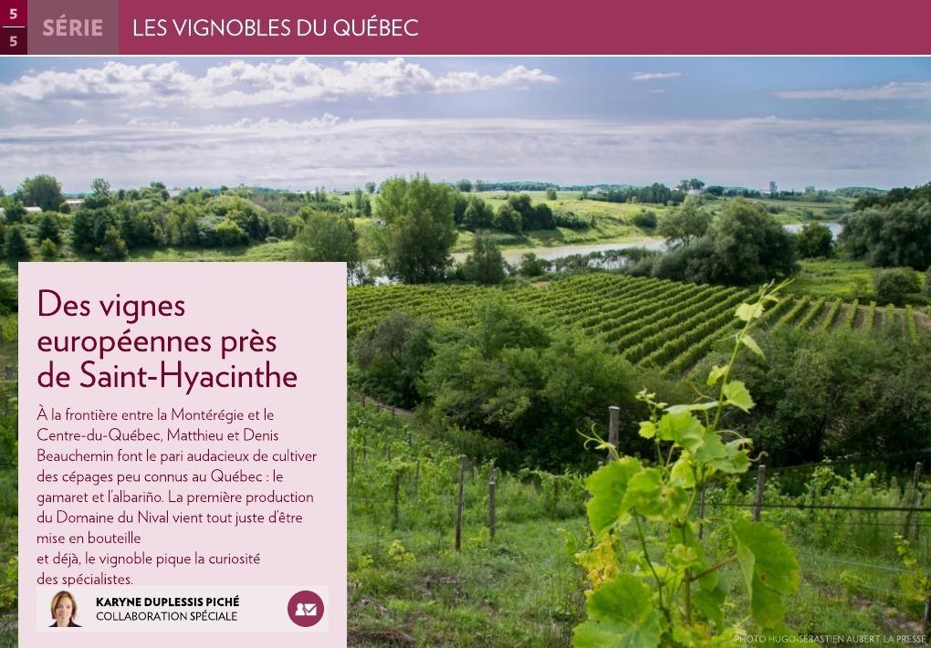 Des vignes europ ennes pr s de saint hyacinthe la presse for 860 plante st hyacinthe