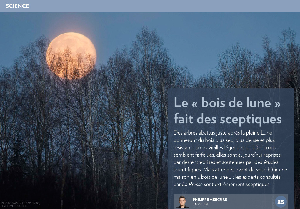 le bois de lune fait des sceptiques la presse. Black Bedroom Furniture Sets. Home Design Ideas